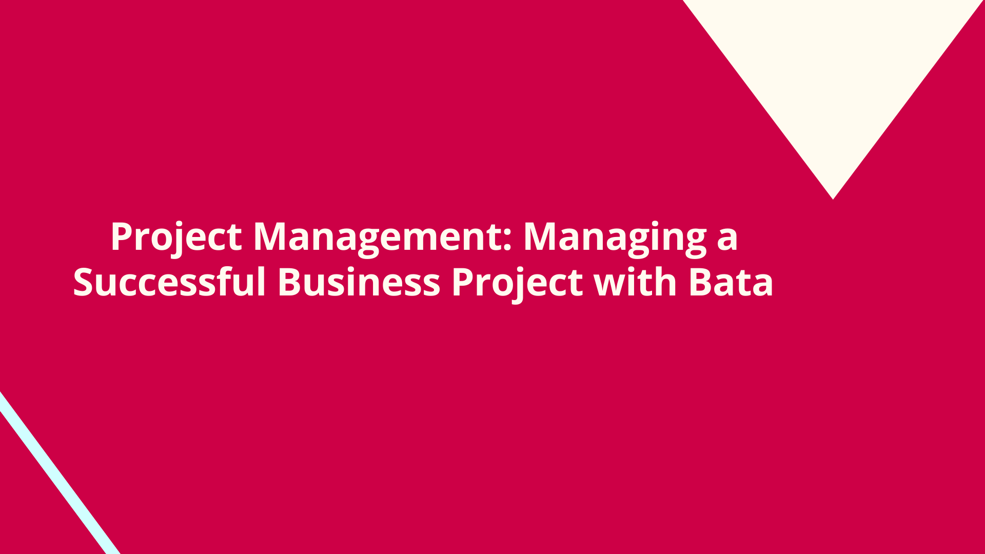 Project Management: Managing a Successful Business Project by Bata