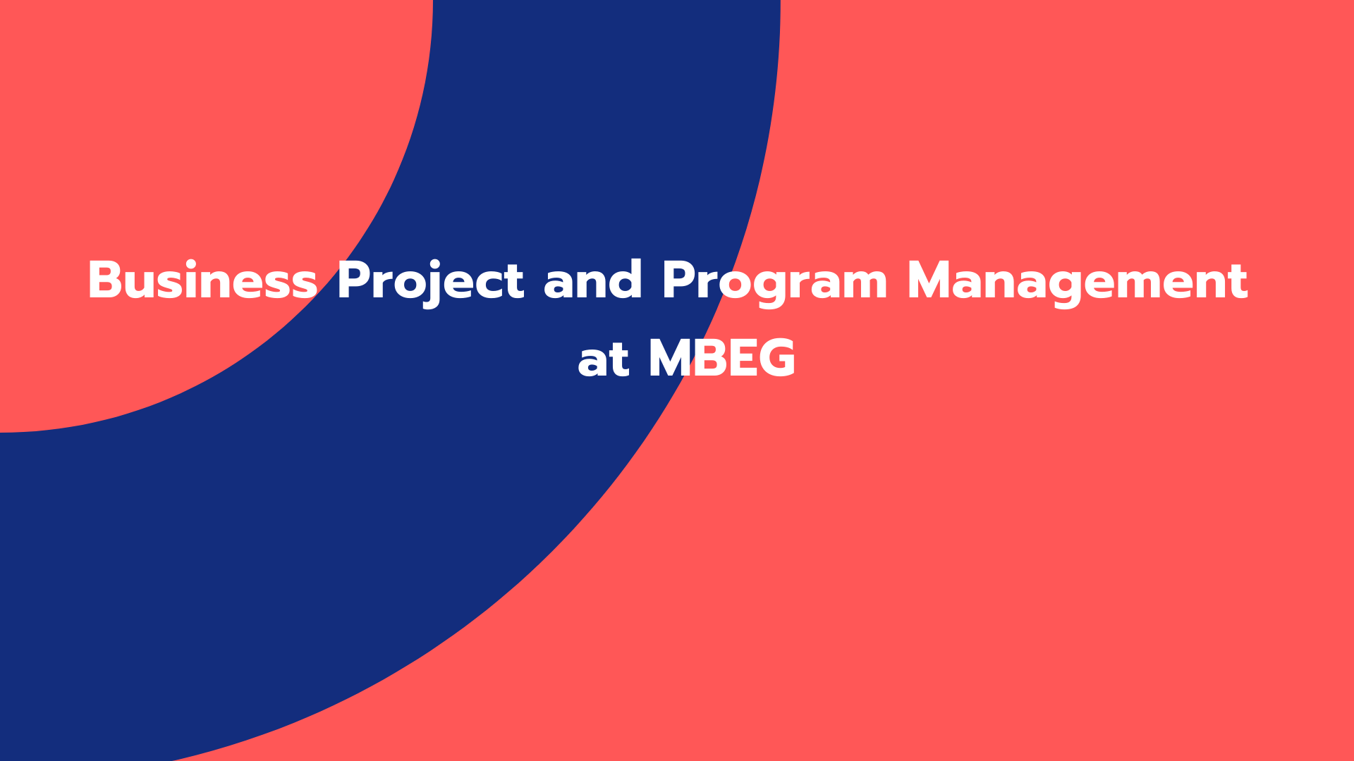 Business Project and Program Management: MBEG