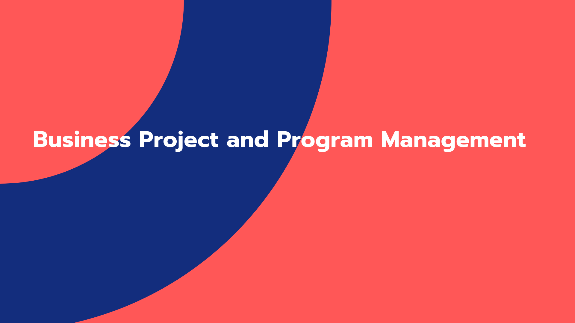 Business Project and Program Management