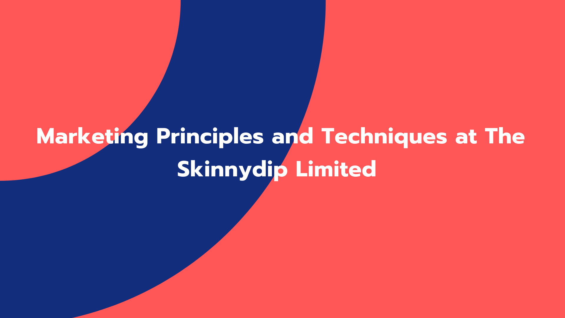 Marketing Principles and Techniques at The Skinnydip Limited