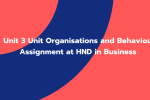 Unit 3 Unit Organisations and Behaviour Assignment at HND in Business