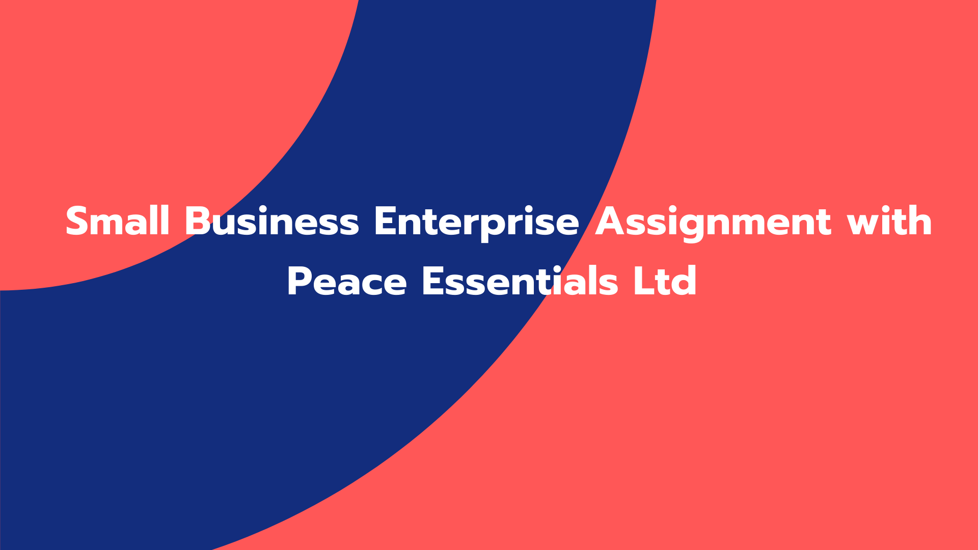 Small Business Enterprise Assignment with Peace Essentials Ltd