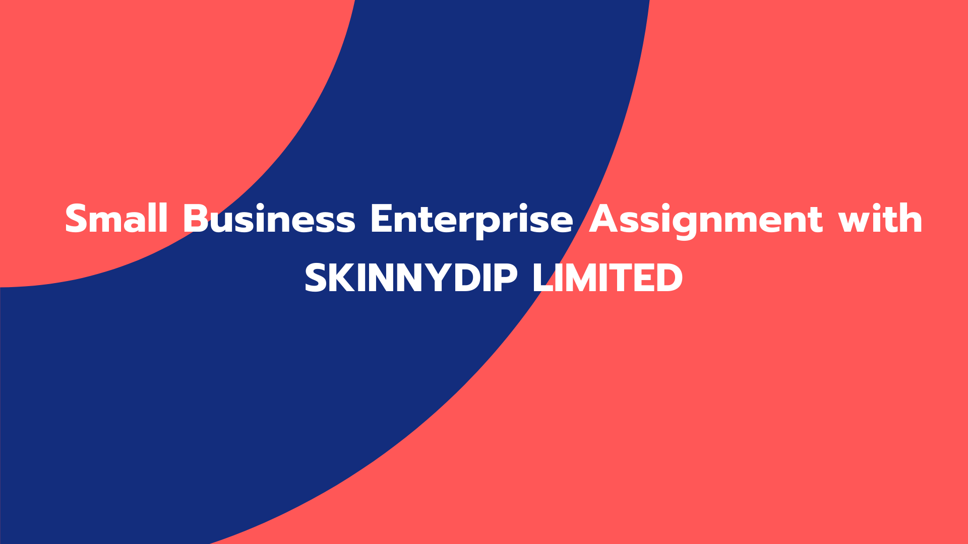 Small Business Enterprise Assignment with SKINNYDIP LIMITED