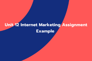 Unit 12 Internet Marketing Assignment Example