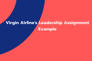 Virgin Airline's Leadership Assignment Example