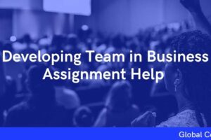 Developing Team in Business Assignment Help