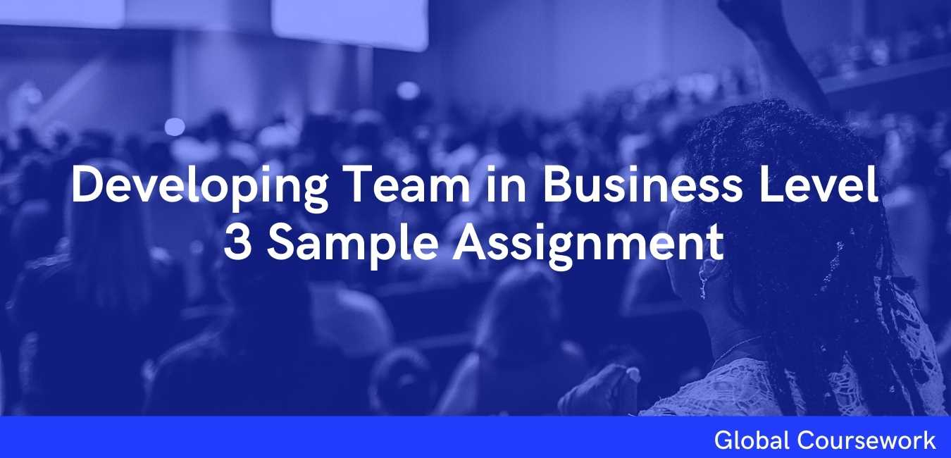 Developing Team in Business Level 3 Sample Assignment