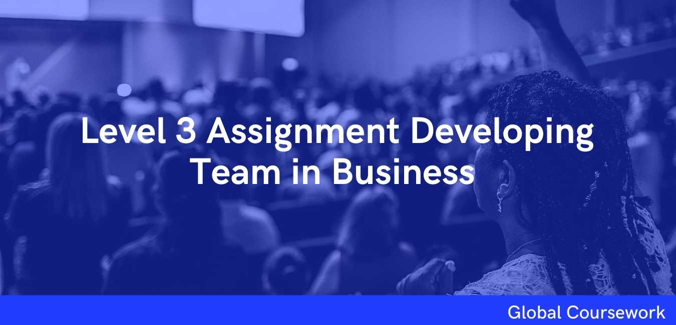 Level 3 Assignment Developing Team in Business
